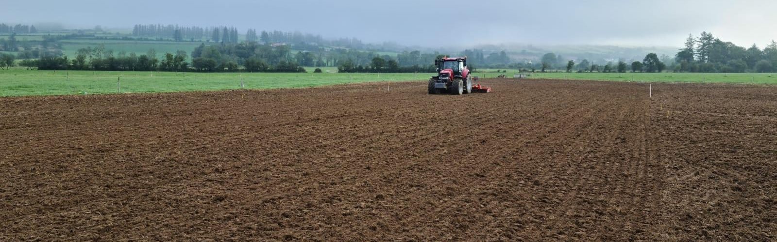 Still time to reseed your ley